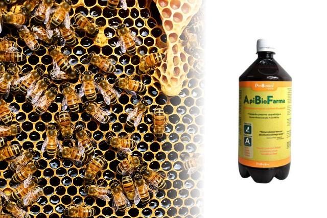 Probiotyki dla pszczół