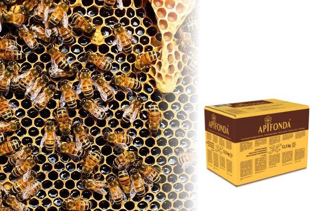 Apifonda - pokarm dla pszczół